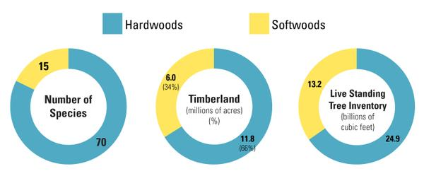 Figure 1. In North Carolina, hardwoods dominate softwoods